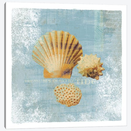 Tidal Treasures Canvas Print #WAC1896} by Wild Apple Portfolio Canvas Art Print