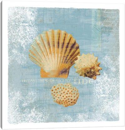 Tidal Treasures Canvas Print #WAC1896