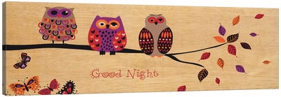 Good Night Owl by Wild Apple Portfolio Canvas Art Print