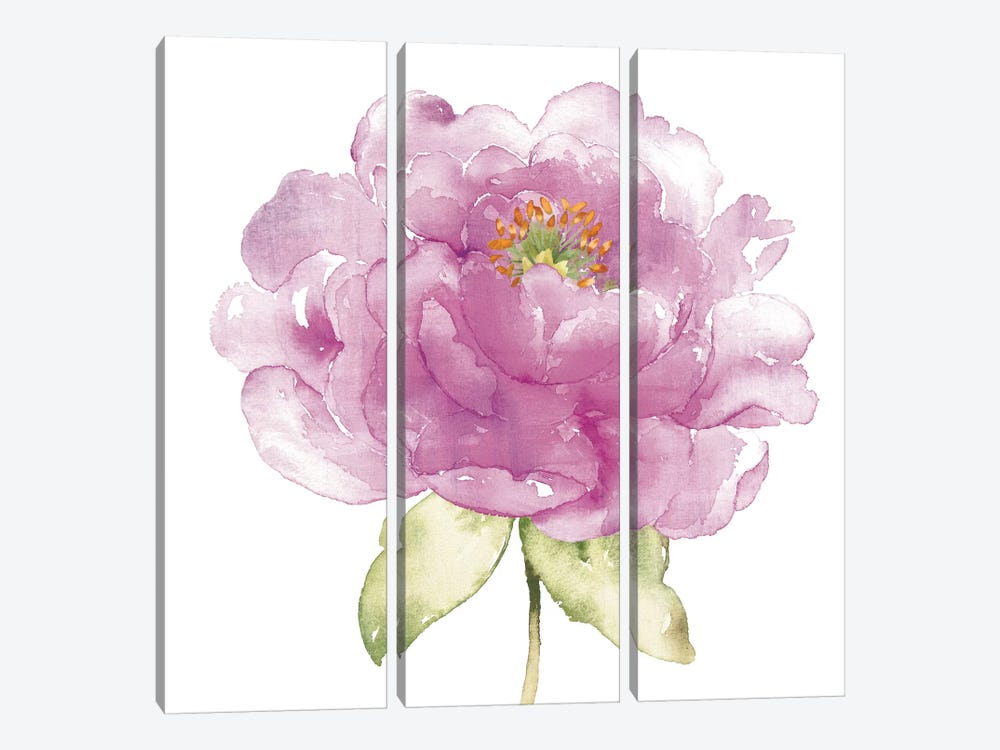 Water Flower II by Wild Apple Portfolio 3-piece Canvas Artwork
