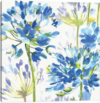 Blue Medley III Canvas Print #WAC1982