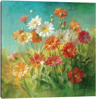 Painted Daisies Canvas Art Print
