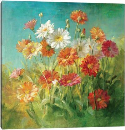 Painted Daisies Canvas Art Print