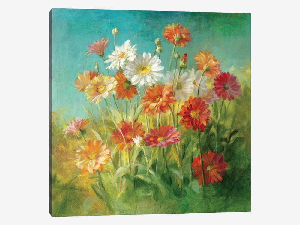 Painted Daisies by Danhui Nai 1-piece Canvas Print