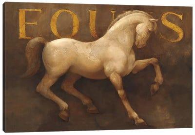 Equus Canvas Print #WAC1