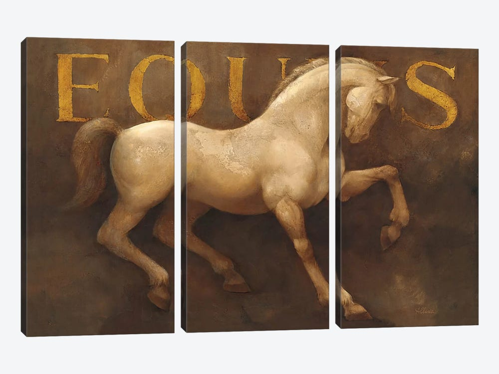 Equus by Albena Hristova 3-piece Canvas Artwork