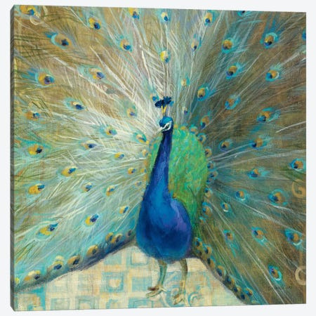 Blue Peacock on Gold Canvas Print #WAC2008} by Danhui Nai Art Print