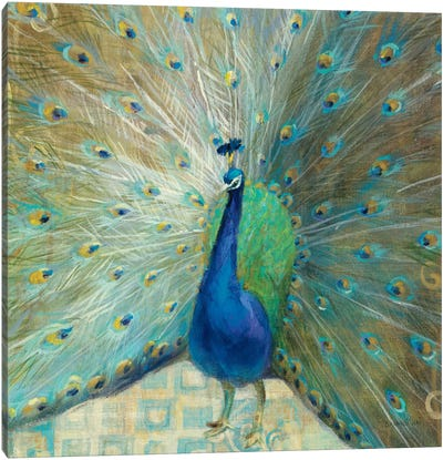 Blue Peacock on Gold Canvas Art Print