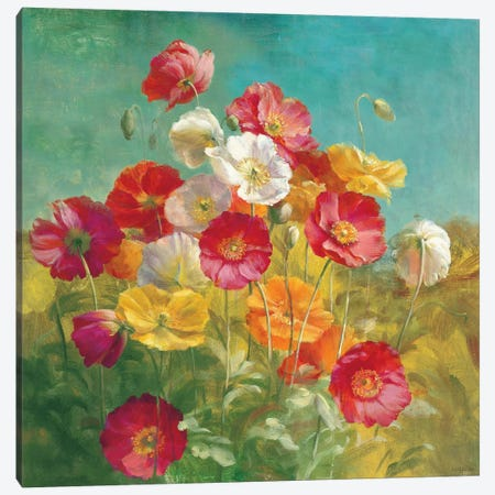 Poppies in the Field Canvas Print #WAC202} by Danhui Nai Canvas Artwork