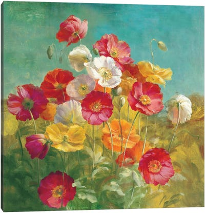 Poppies in the Field Canvas Print #WAC202