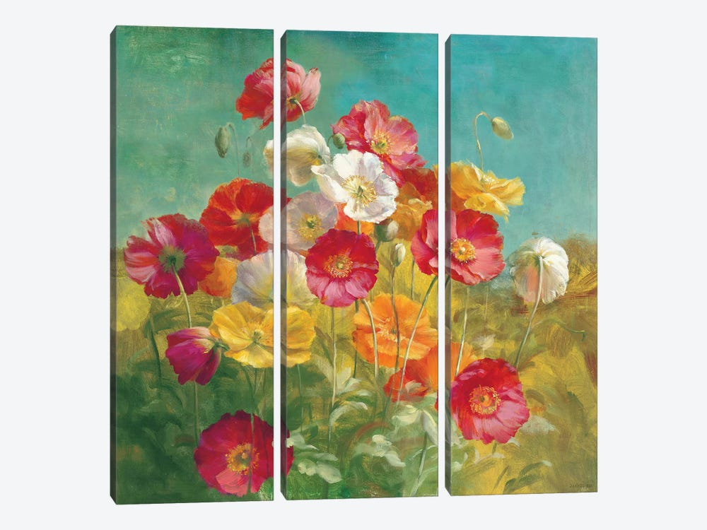 Poppies in the Field by Danhui Nai 3-piece Canvas Art Print