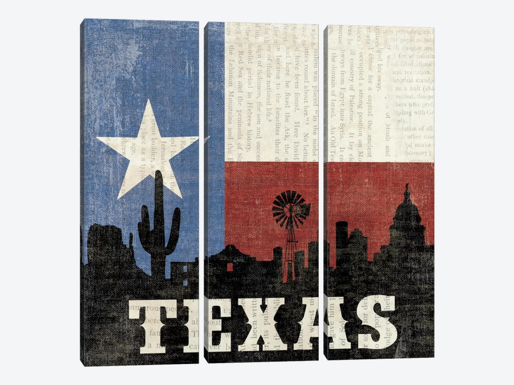 Texas by Moira Hershey 3-piece Canvas Art