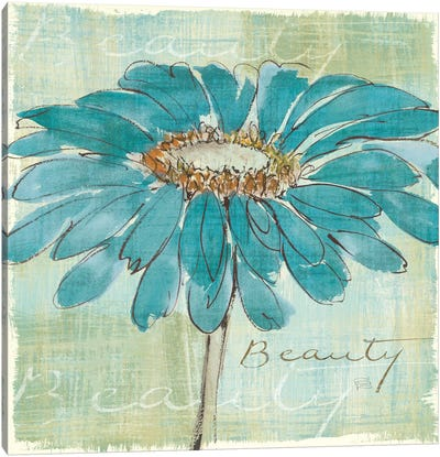 Spa Daisies I Canvas Art Print