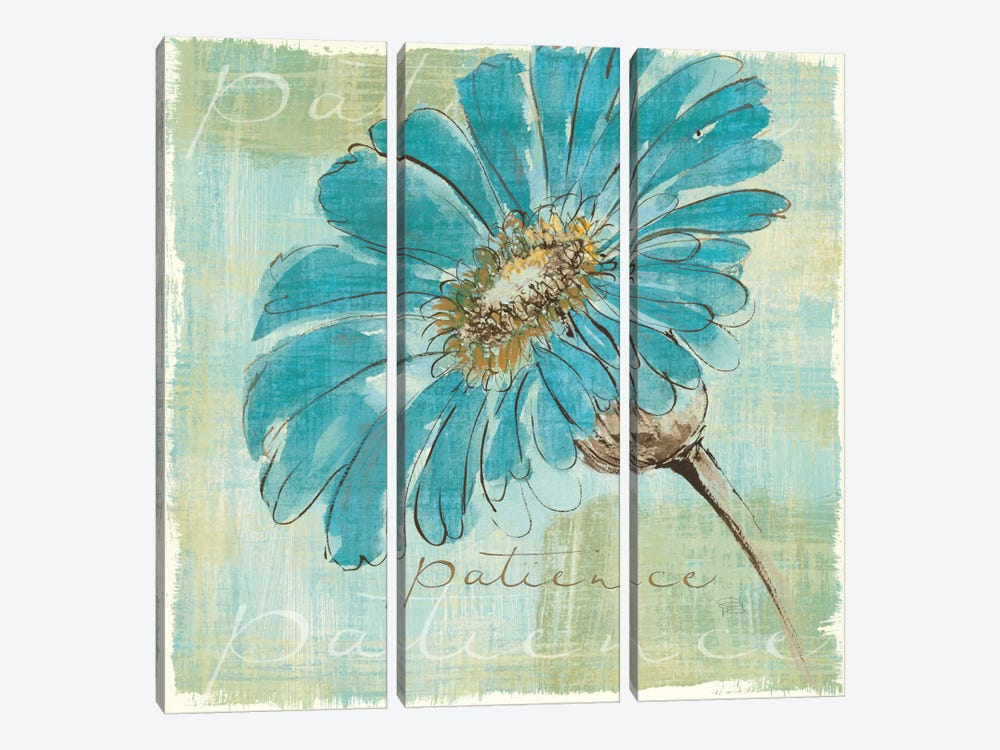Spa Daisies II by Chris Paschke 3-piece Canvas Art