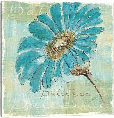 Spa Daisies II Canvas Art Print