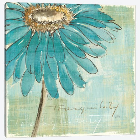 Spa Daisies III Canvas Print #WAC2038} by Chris Paschke Canvas Artwork