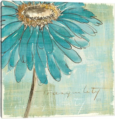 Spa Daisies III Canvas Print #WAC2038
