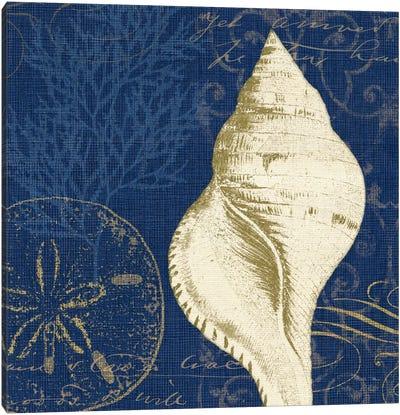 Coastal Moonlight IV Canvas Print #WAC2041