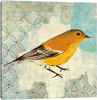 Pine Warbler Canvas Art Print