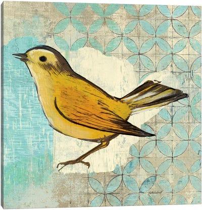 Wilsons Warbler II Canvas Art Print