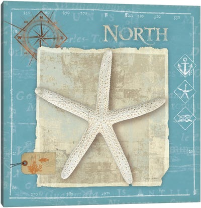 Points North Canvas Art Print