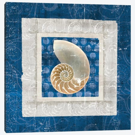 Sea Shell II on Blue Canvas Print #WAC2054} by Belinda Aldrich Canvas Art Print