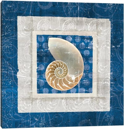 Sea Shell II on Blue Canvas Art Print
