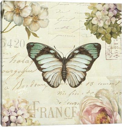 Marche de Fleurs Butterfly II Canvas Print #WAC2085
