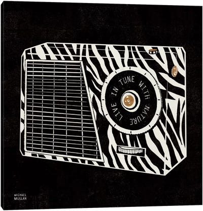 Analog Jungle Radio Canvas Art Print