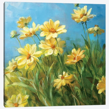 Summer Field I Canvas Print #WAC213} by Danhui Nai Art Print