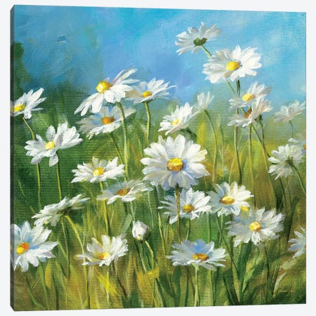 Summer Field II Canvas Print #WAC214} by Danhui Nai Canvas Wall Art