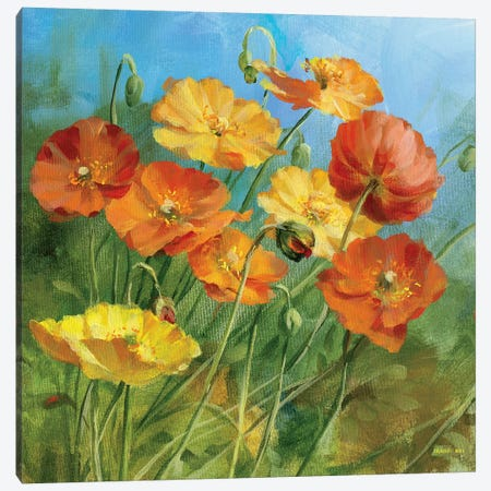 Summer Field IV Canvas Print #WAC216} by Danhui Nai Canvas Wall Art