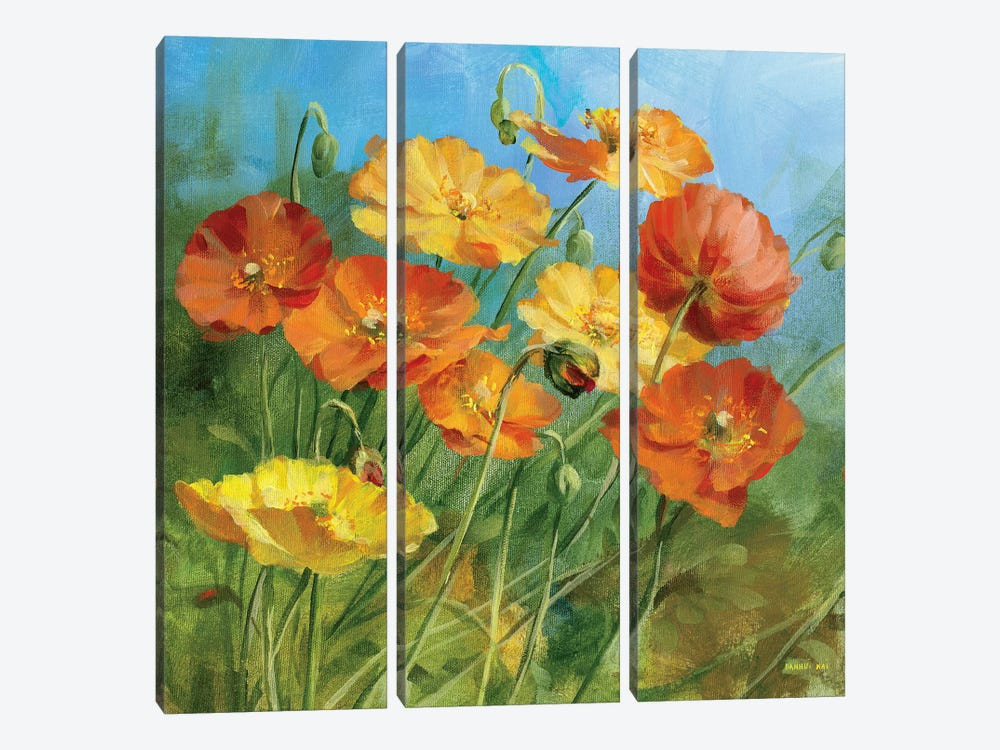 Summer Field IV by Danhui Nai 3-piece Canvas Wall Art