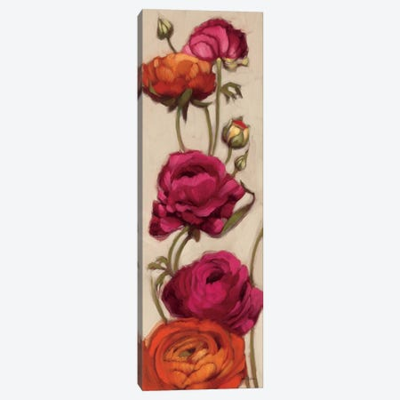 Free Range Roses II  Canvas Print #WAC2176} by Diane Hoeptner Canvas Art