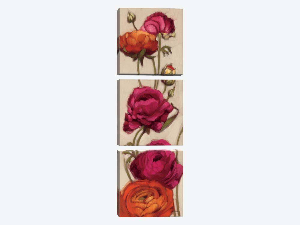 Free Range Roses II  by Diane Hoeptner 3-piece Canvas Art