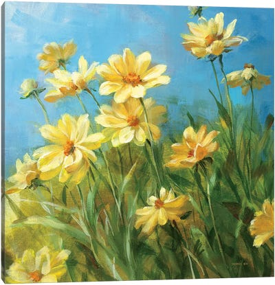 Summer Field I  Canvas Art Print