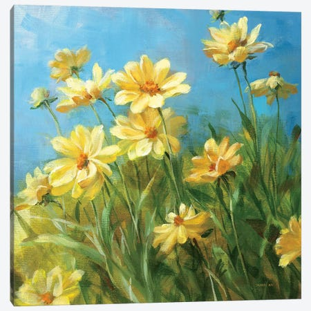 Summer Field I  Canvas Print #WAC217} by Danhui Nai Canvas Art
