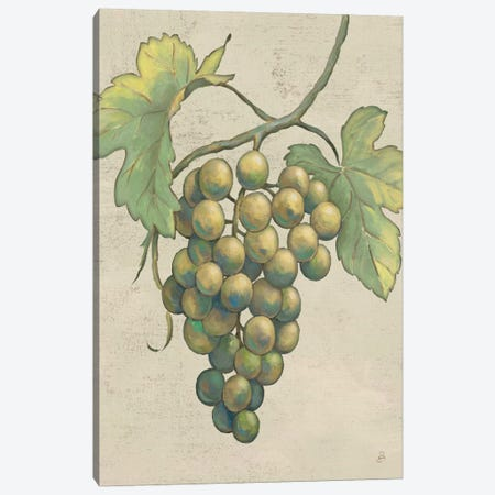 Lovely Fruits IV Neutral Plain  Canvas Print #WAC2185} by Daphne Brissonnet Art Print
