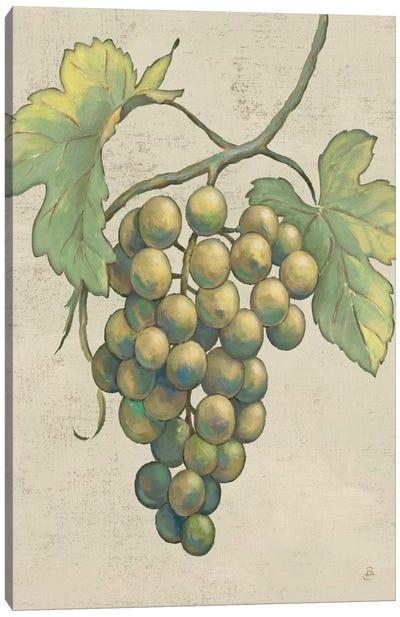 Lovely Fruits IV Neutral Plain  Canvas Print #WAC2185
