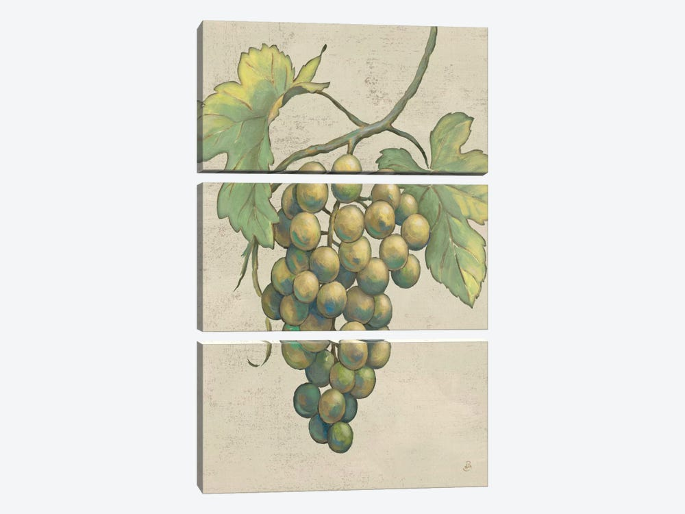 Lovely Fruits IV Neutral Plain by Daphne Brissonnet 3-piece Canvas Wall Art