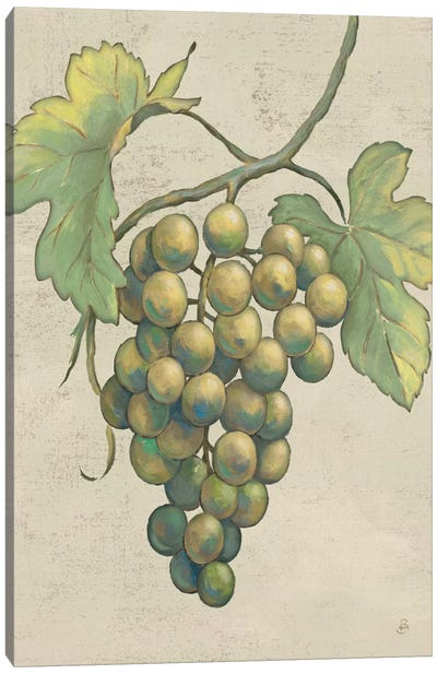 Lovely Fruits IV Neutral Plain  Canvas Art Print