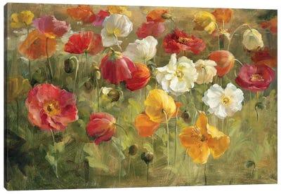Poppy Field Canvas Art Print