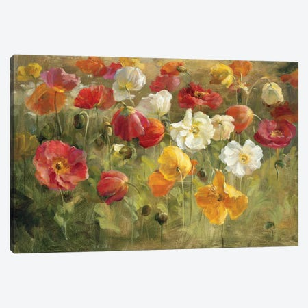 Poppy Field Canvas Print #WAC219} by Danhui Nai Canvas Art Print