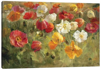 Poppy Field Canvas Art Print