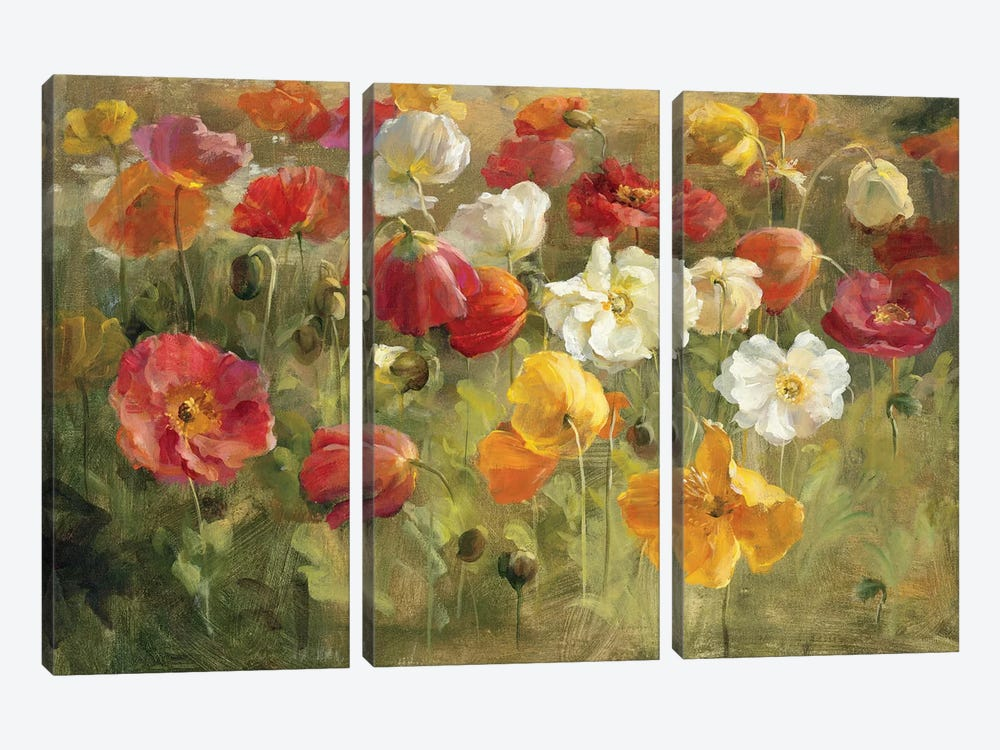 Poppy Field by Danhui Nai 3-piece Canvas Print