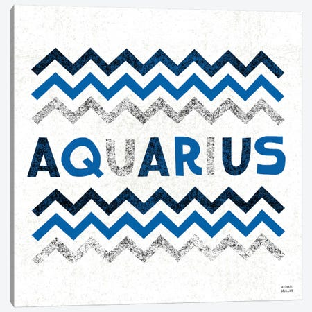 Zodiac Aquarius Canvas Print #WAC2206} by Michael Mullan Canvas Art