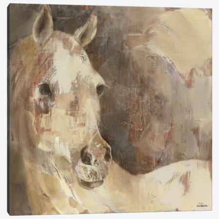 Jasmine Canvas Print #WAC2247} by Albena Hristova Canvas Art
