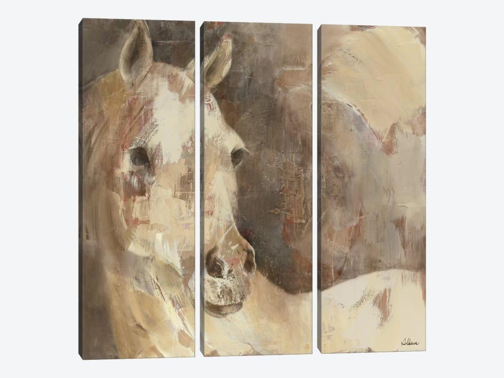 Jasmine by Albena Hristova 3-piece Canvas Artwork
