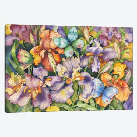 Bearded Iris and Butterflies Canvas Print #WAC2252} by Kathleen Parr McKenna Canvas Art