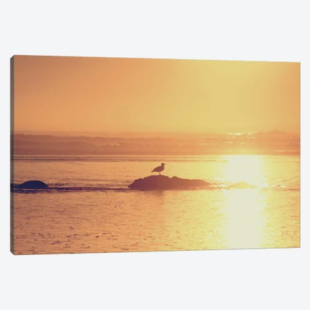 Kalaloch Sunset I Canvas Print #WAC2271} by Laura Marshall Canvas Wall Art